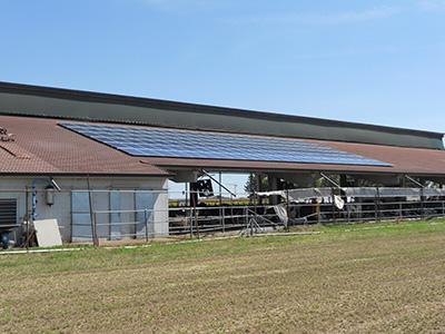 impianto fotovoltaico azienda agricola